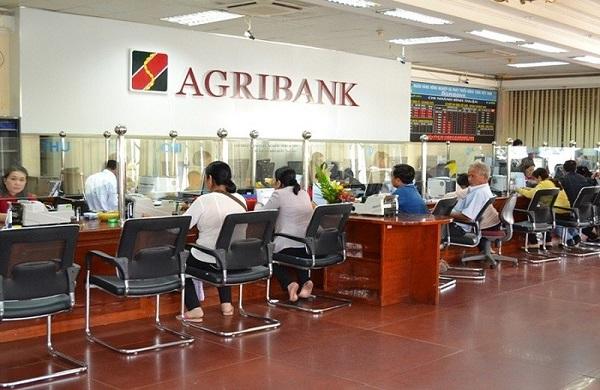 Agribank góp phần đẩy nhanh quá trình xử lý nợ xấu - Hình 2