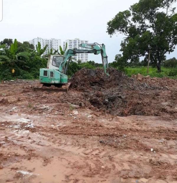 TP. HCM tiêu hủy 122 con lợn bị nhiễm bệnh dịch tả châu Phi - Hình 2