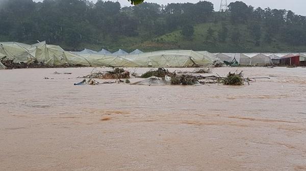 Lâm Đồng: Mưa lũ khiến hàng chục người bị mắc kẹt - Hình 2