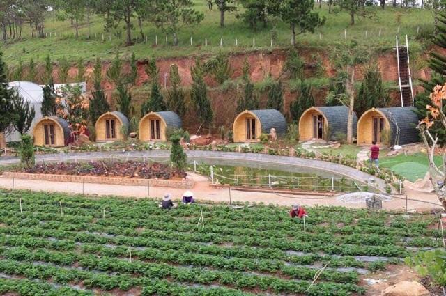 Trang trại nghỉ dưỡng bungalow Lâm Đồng
