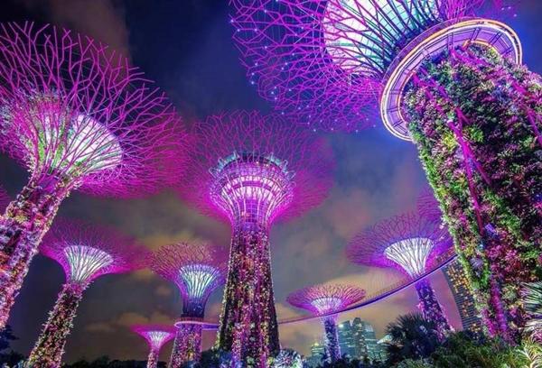 Công viên Ánh sáng tại Vinhomes Grand Park Hồ Chí Minh sẽ là điểm đến đặc biệt yêu thích của người dân TP.HCM