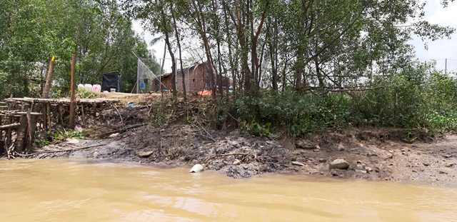 """Cty Sài Gòn Gôn tìm mọi cách được """"giữ đất"""" song lại không thể thực hiện dự án, hiện 156ha đất công khu nông trường dừa"""