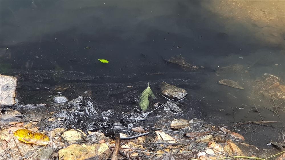 Khu vực dầu tràn đầu nguồn con suối đến nay vẫn một màu đen kịt