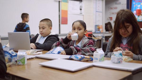 Driftwood hiện có hơn 377 chủng loại sản phẩm và là đơn vị cung cấp sữa học đường cho khu vực Nam California.