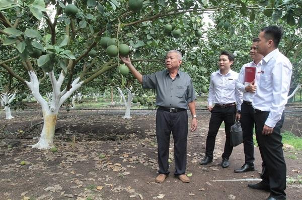 """Nguồn vốn Agribank đầu tư phát triển """"Tam nông"""" của Agribank hiện chiếm trên 50% thị phần tín dụng nông nghiệp, nông thôn tại Việt Nam"""