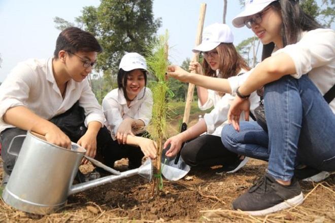 Các đơn vị tham gia trồng đồi cây tại Khu D - Khu di tích lịch sử Đá Chông K9