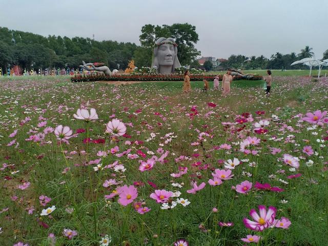 Khu công viên hoa cảnh Nam Cầu Kiền