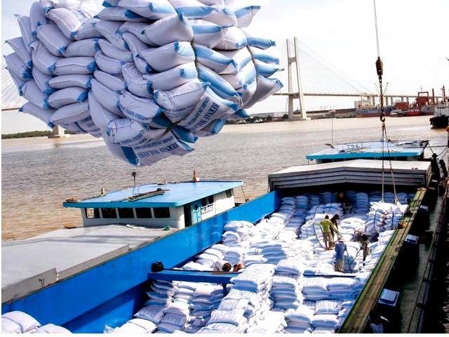 Nhiều doanh nghiệp kinh doanh gạo đang bị tổn thất kinh tế rất lớn do việc ngừng xuất khẩu gạo