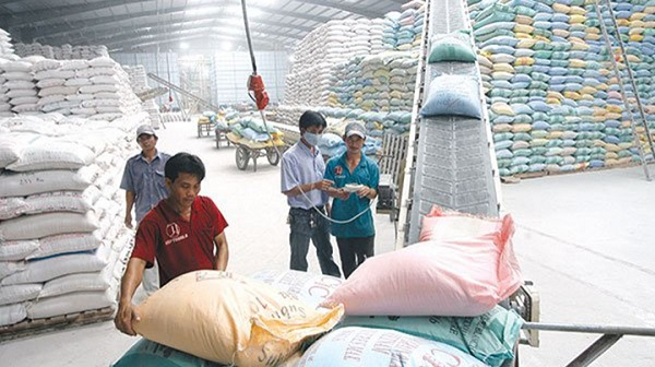 Giá gạo trong nước tăng mạnh do găm hàng, thao túng giá?