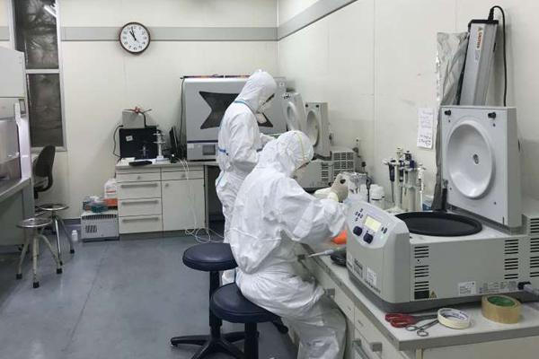 Các nhà khoa học của Viện Vệ sinh dịch tễ Trung ương xét nghiệm xác định các mẫu bệnh phẩm nhiễm Covid-19