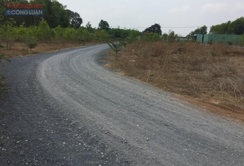 Thửa đất 62, tờ bản đồ số 19 ở ấp Tân Lập là đất nông nghiệp nhưng chủ đầu tư đã làm đường, phân lô để bán