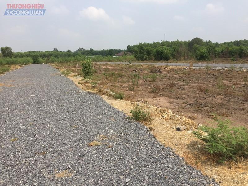 Bất chấp quy hoạch và luật chuyển đổi mục đích sử dụng đất, chủ đầu tư làm đường trên đất nông nghiệp để bán