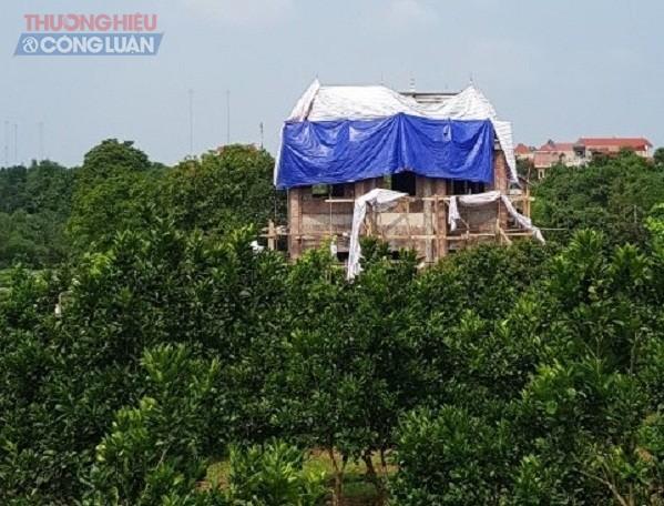 """căn được xây dựng bề thế như một """"biệt phủ"""" được ẩn mình sau những ngọn đồi"""