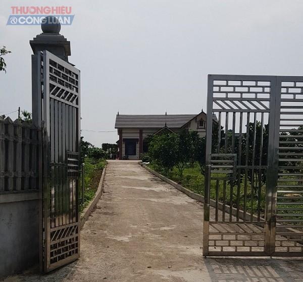 Được biết mục đích sử dụng đất tại đồi Hoàng Long là để trồng cây lâu năm