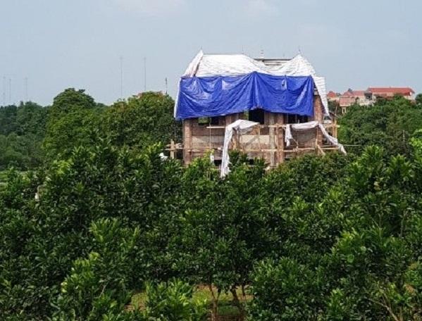 UBND Huyện Ba Vì đang chỉ đạo xử lý vụ việc xây dựng trái phép trên đất đồi Hoàng Long, xã Tản Lĩnh