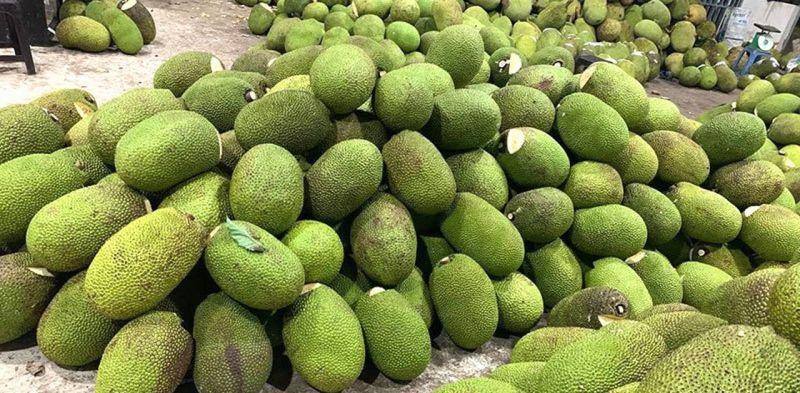 Giá mít Thái giảm còn 4.000 - 8.000 đồng/kg