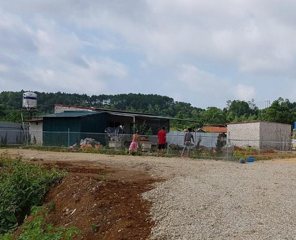 Đất dự án đang đấu thầu, công trình xây dựng vẫn vô tư mọc lên