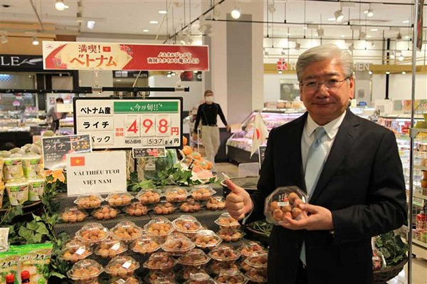 Vải thiều Việt Nam được tiêu thụ hết tại hệ thống siêu thị ở Tokyo và Osaka, Nhật Bản