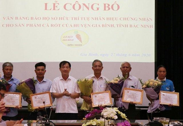 Trao Giấy chứng nhận quyền sử dụng nhãn hiệu cho sản phẩm cà rốt của huyện Gia Bình cho sáu cơ sở sản xuất cà rốt tiêu biểu