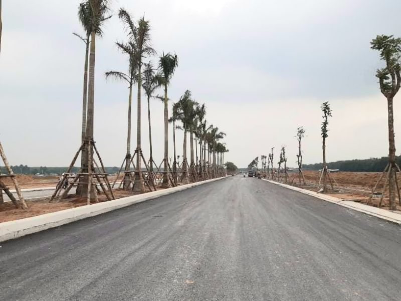 Tuyến đường tại dự án được trãi thảm nhựa, trồng cây kiên cố
