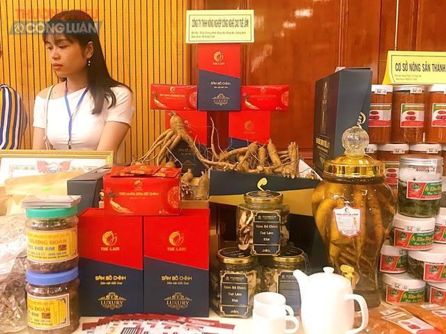 Sản phẩm Sâm Bố Chính Tuệ Lâm - Quảng Bình tại gian trưng bày hội nghị
