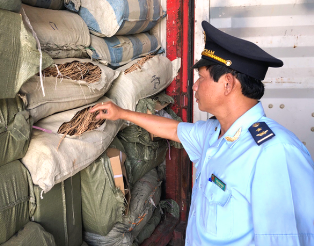 Cơ quan hải quan khám xét 1 trong 5 container vi phạm.