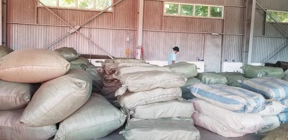 Thảo dược khai rau củ nhập từ Trung Quốc bị bắt giữ tại Đà Nẵng