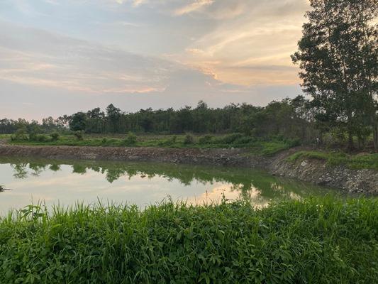 Khu đất ruộng lúa bị khai thác trái phép nay đã thành hồ nước sâu hơn 3 m