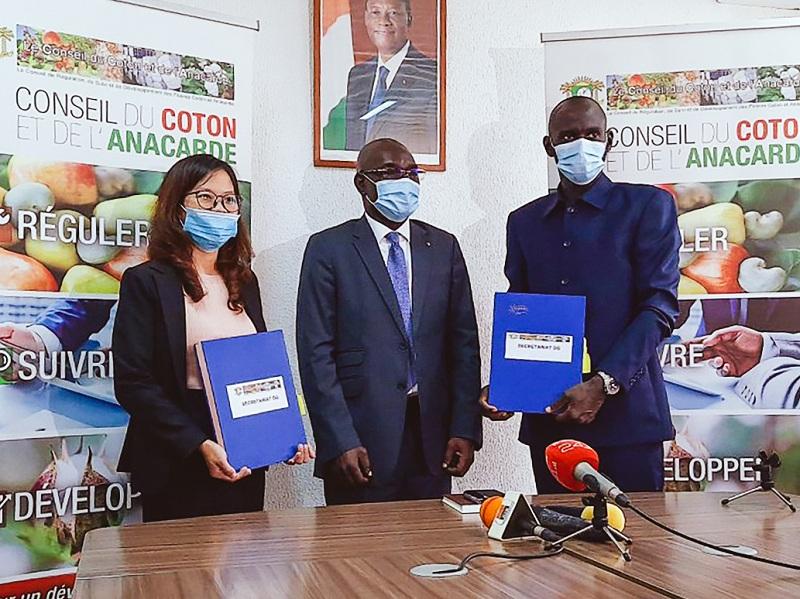 Bà Phạm Thị Phương Mai, đại diện Tập đoàn T&T Group và đại diện Liên minh các nhà xuất khẩu điều Bờ Biển Ngà ký kết hợp đồng thu mua 150.000 tấn điều thô dưới sự chứng kiến của Hội đồng Bông và Điều Bờ Biển Ngà