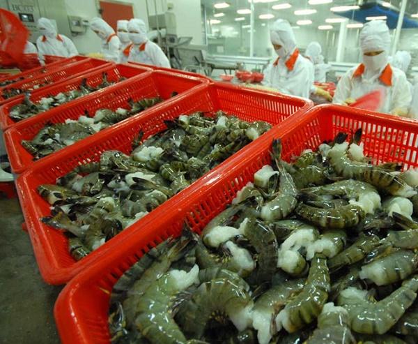 Thủy sản được hưởng lợi ngay từ EVFTA chính thức có hiệu lực