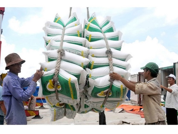 Doanh nghiệp Costa Rica muốn mua gạo Việt Nam