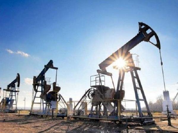 Giá xăng dầu ngày 12/8, mất đà tăng (ảnh minh họa)