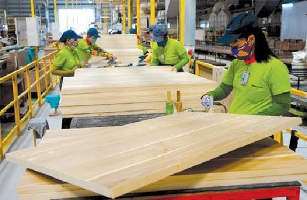 Gỗ cao su dạng tấm xuất khẩu chính thức được áp thuế 0%