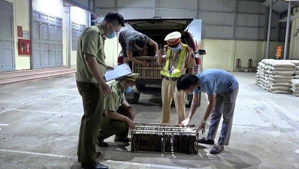 Lực lượng QLTT Lạng Sơn kiểm đếm trứng côn trung vừa thu giữ