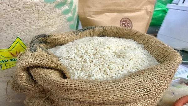 Việt Nam có 9 giống gạo thơm được hưởng hạn ngạch thuế quan khi xuất sang EU
