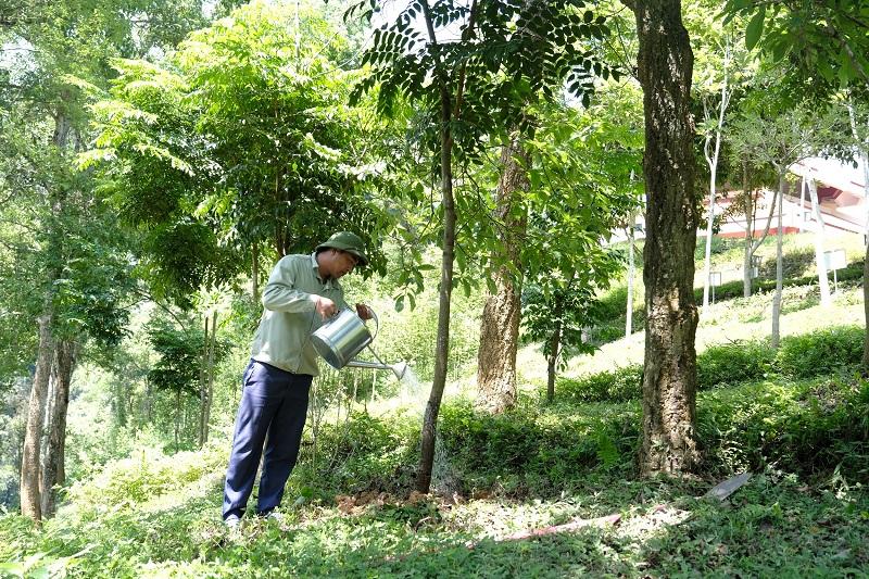 """Tại khu di tích lịch sử Pác Bó, Cao Bằng, cây xanh do chương trình """"Quỹ 1 triệu cây xanh cho Việt Nam"""" trồng tặng luôn được chăm sóc cẩn thận, chu đáo."""
