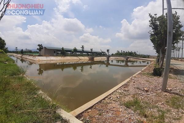 Khu vực ao ươm, thả cá giống rộng hàng ngàn m2 của Công ty CP Synot Asean