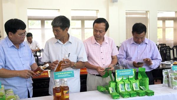 Hội đồng đánh giá thẩm tra bao bì và thông tin về sản phẩm