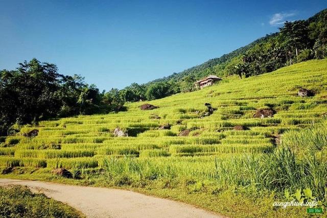 Du lịch mùa lúa chín tại Pù Luông huyện Bá Thước