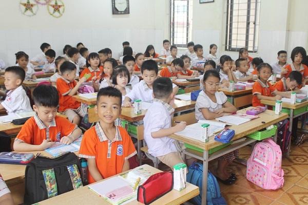 Học sinh tiểu học trường công lập