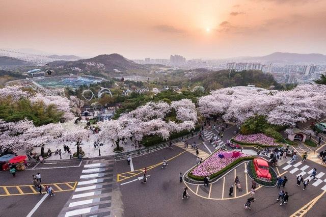 Vietjet khẩn trương mở lại mạng bay quốc tế đến Tokyo (Nhật Bản), Seoul (Hàn Quốc) và Đài Bắc (Đài Loan, Trung Quốc).