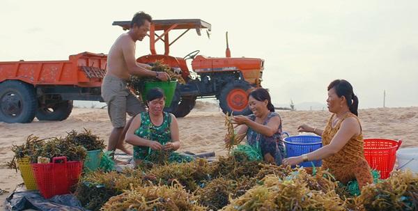 Sự kết hợp giữ rong biển và Chanh leo đã tạo ra một sản phẩm độc đáo thu hút khách hàng giới trẻ