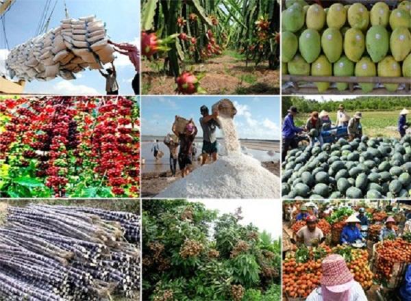 Trên 150 nhà nhập khẩu nước ngoài giao thương trực tuyến với doanh nghiệp nông sản, thực phẩm Việt Nam (Ảnh minh họa)