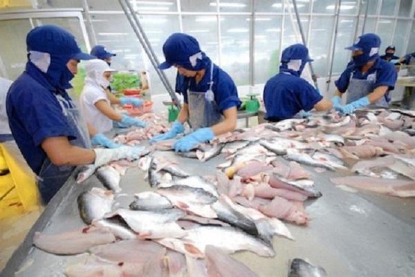 Xuất khẩu cá tra sang Anh tăng