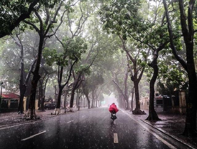 Dự báo thời tiết hôm nay 28/9: Mưa bao trùm các tỉnh thành cả nước