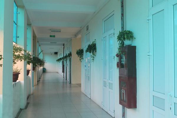 Hệ thống cây xanh đẹp mắt ở BVĐK tỉnh Vĩnh Phúc