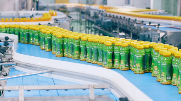 Công ty Long Hải đã chế biến rong sụn thành  đồ uống bổ dưỡng  cho người tiêu dùng