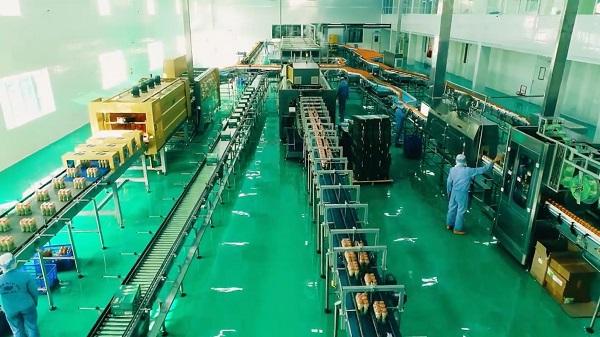 Với dây chuyền máy móc hiện đại Công ty Long Hải chế  biến rong biển thành những sản phẩm ngon, bổ dưỡng đưa đến tay người tiêu dùng