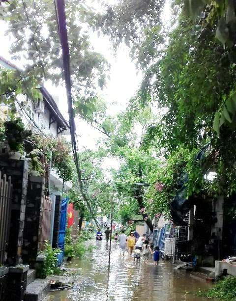 Con đường Ưng Bình chỉ hơn 100m, mưa là ngập nhưng hơn 50 năm qua không được nâng cấp