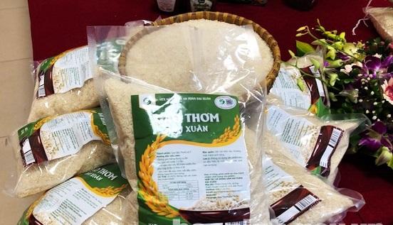 Gạo thơm Đại Xuân, huyện Quế Võ là 1 trong 33 sản phẩm OCOP cấp tỉnh năm 2020